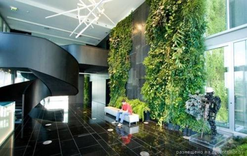 Вертикальные сады 1