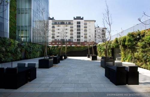 Вертикальные сады 4
