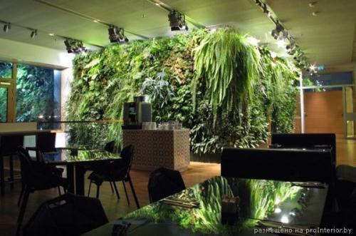 Вертикальные сады 5