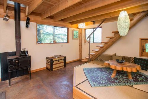 Japanese Forest House 5
