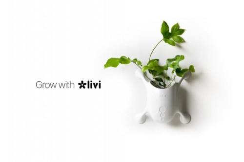 Livi 2